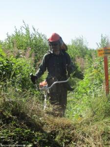 Travailleur forestier_CFGIM
